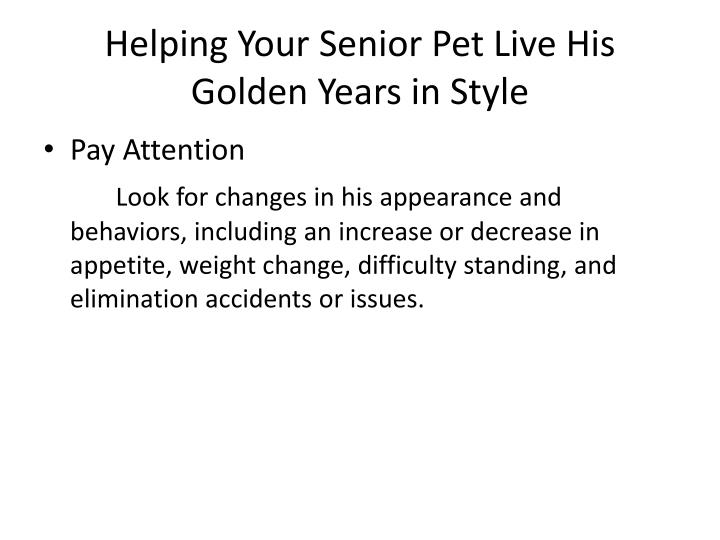 Helping your senior pet live his golden years in style2