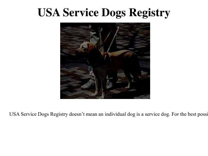 Usa service dogs registry