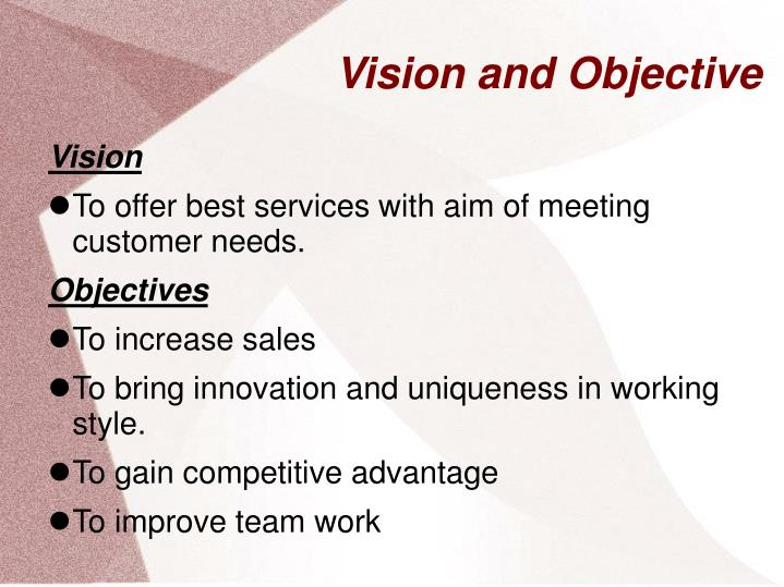 Vision and Objective
