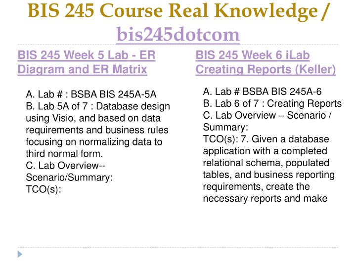 BIS 245 Course Real Knowledge /