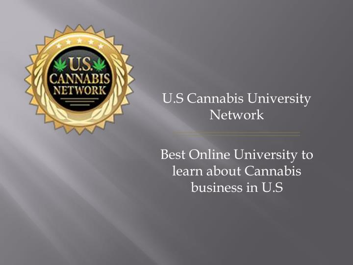 u s cannabis university network best online university to learn about cannabis business in u s n.