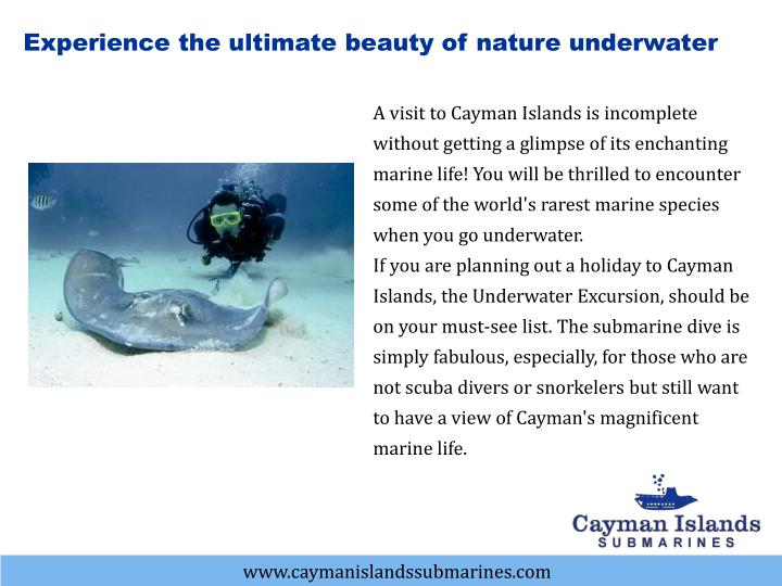 Experience the ultimate beauty of nature underwater