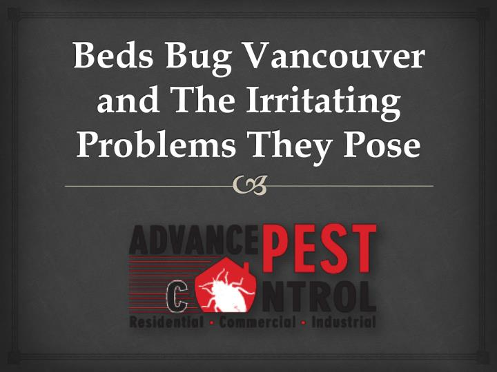 beds bug vancouver and the irritating problems they pose