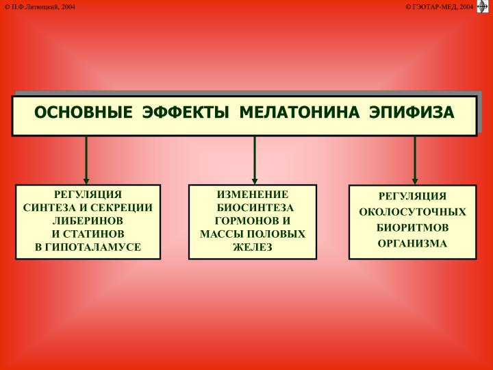 ОСНОВНЫЕ  ЭФФЕКТЫ  МЕЛАТОНИНА  ЭПИФИЗА