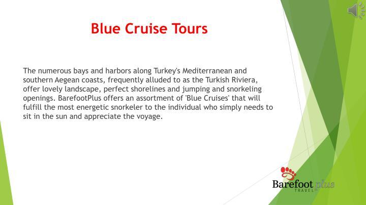 Blue Cruise Tours