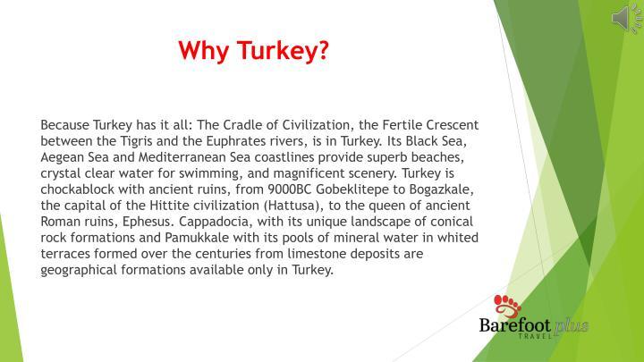 Why Turkey?