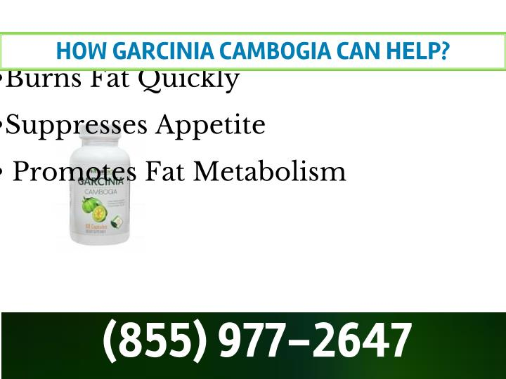 HOW GARCINIA CAMBOGIA CAN HELP?