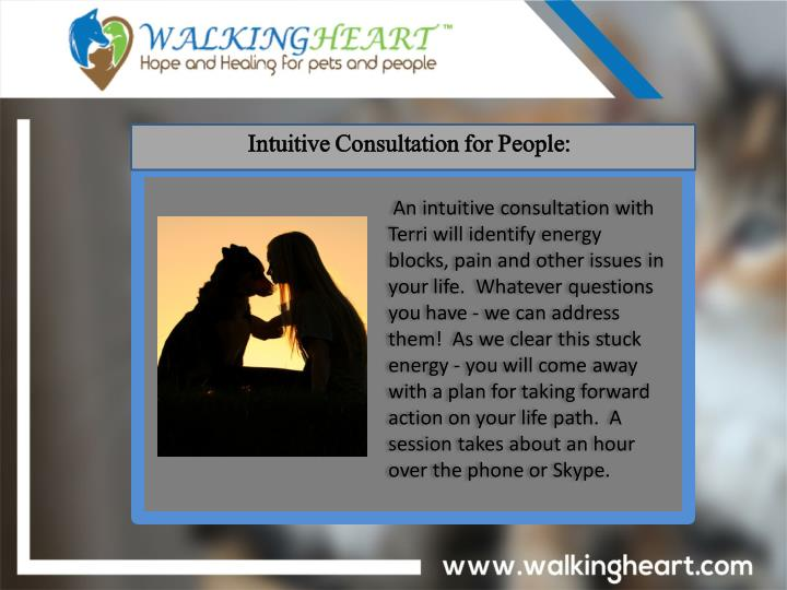 Intuitive Consultation for People: