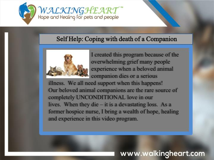 Self Help: Coping with death of a Companion