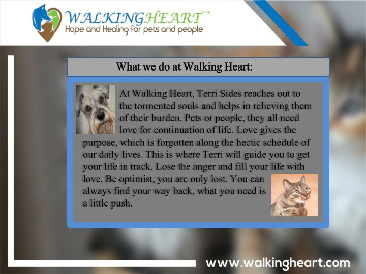 What we do at Walking Heart: