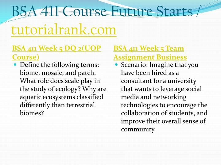 BSA 411 Course Future Starts /