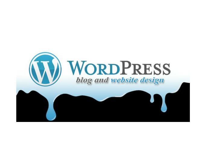Wordpress website development company delhi