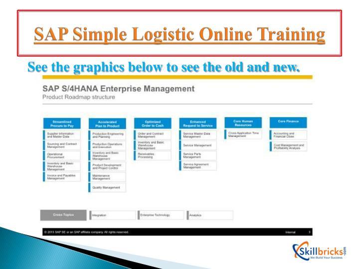 SAP Simple Logistic Online Training
