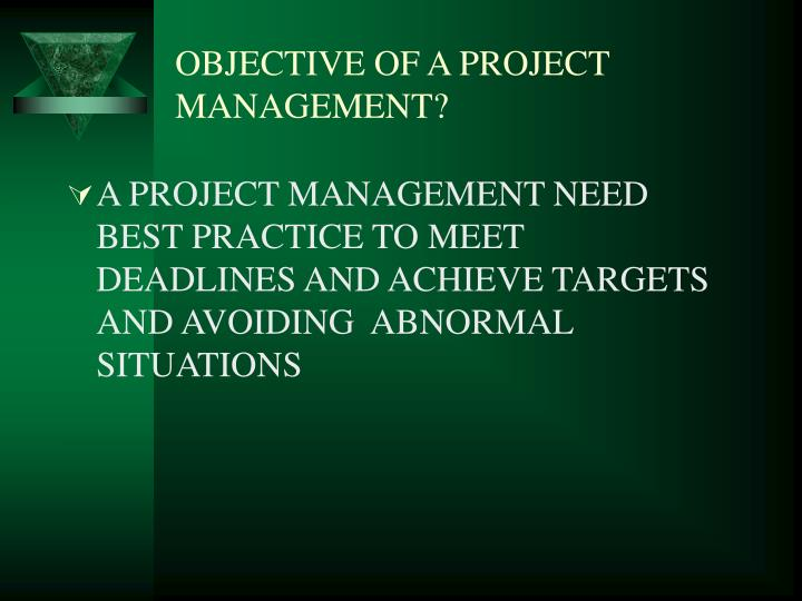 OBJECTIVE OF A PROJECT MANAGEMENT?
