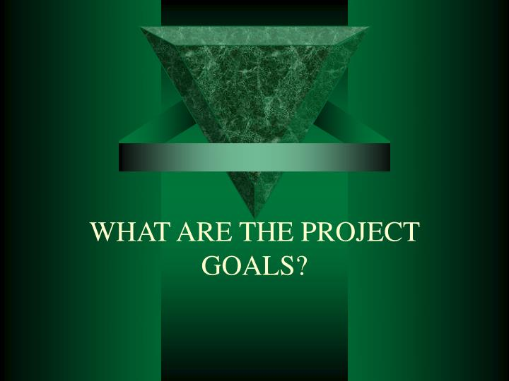 WHAT ARE THE PROJECT GOALS?