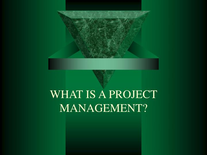 WHAT IS A PROJECT MANAGEMENT?