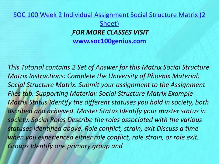 SOC 100 Week 2 Individual Assignment Social Structure Matrix (2 Sheet)