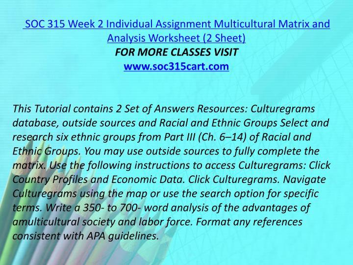 SOC 315 Week 2 Individual Assignment Multicultural Matrix and Analysis Worksheet (2 Sheet)