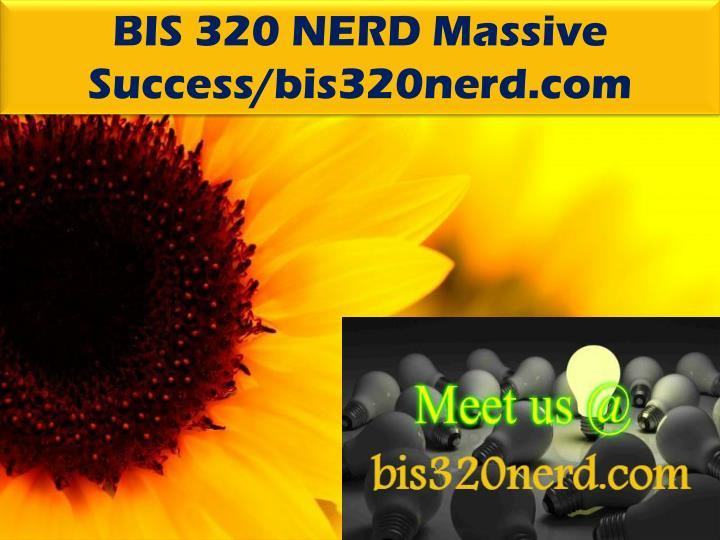 BIS 320 NERD Massive Success/bis320nerd.com