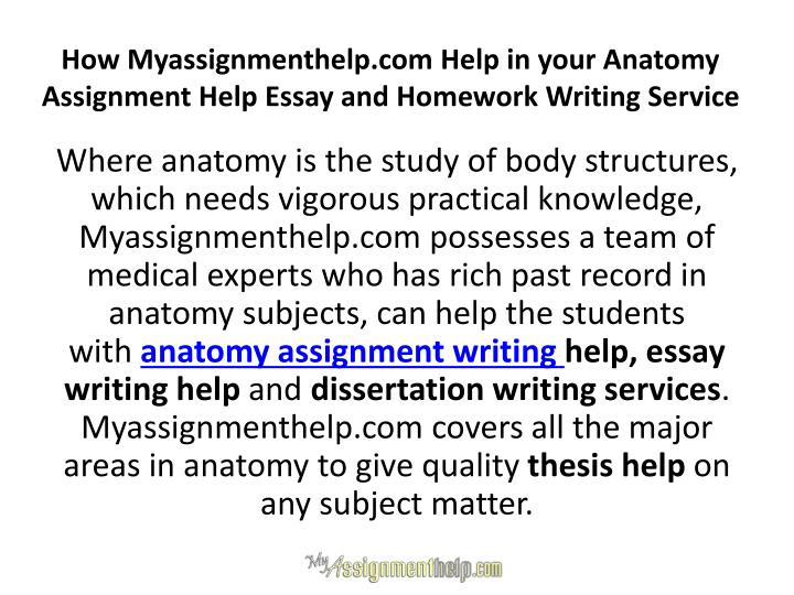 How Myassignmenthelp.com Help in your Anatomy Assignment Help Essay and Homework Writing Service