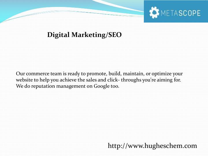 Digital Marketing/SEO