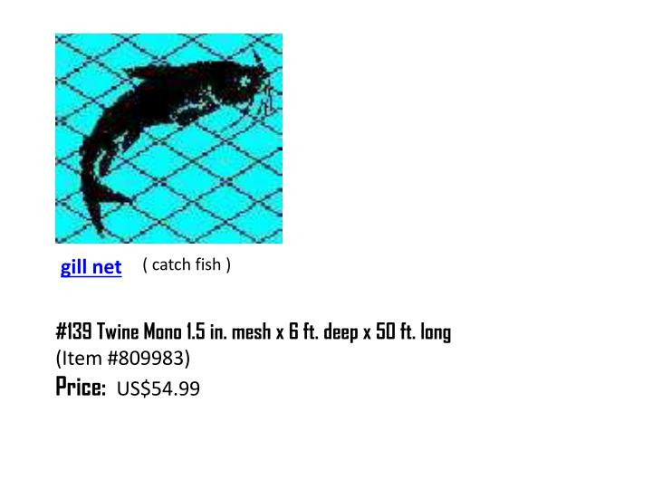 ( catch fish )