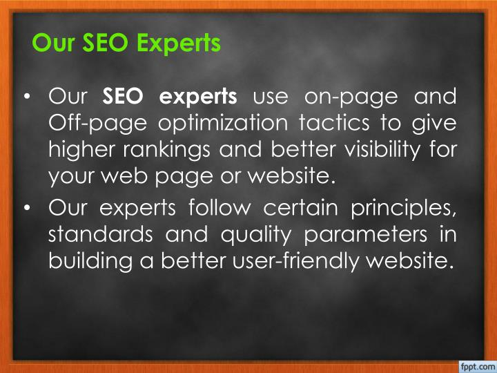 Our seo experts