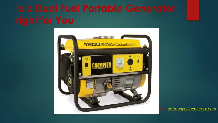 Is a Dual Fuel Portable Generator right for You