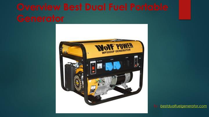 Overview Best Dual Fuel Portable Generator