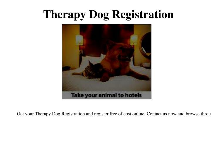 therapy dog registration n.