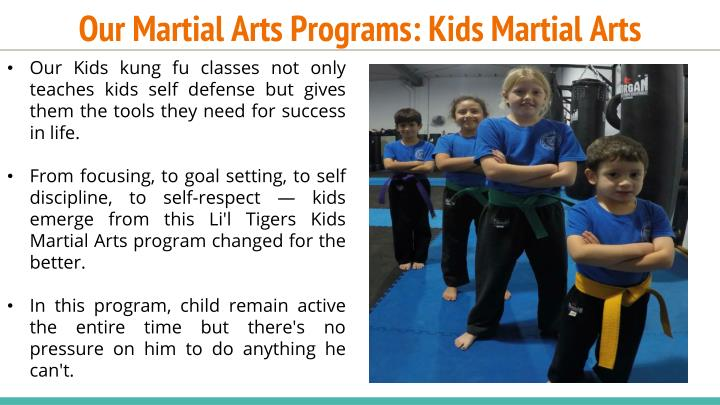 Our Martial Arts Programs: