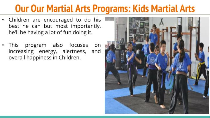 Our Our Martial Arts Programs: