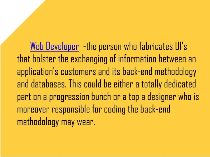Web Developer -