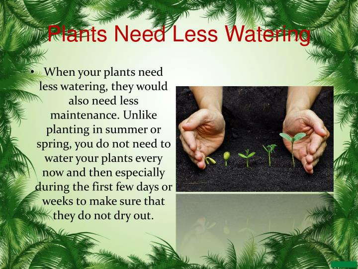 Plants Need Less Watering