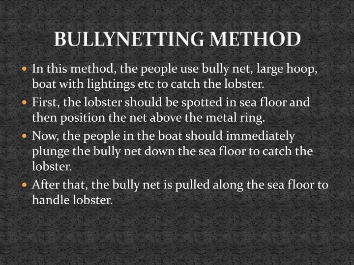 BULLYNETTING METHOD