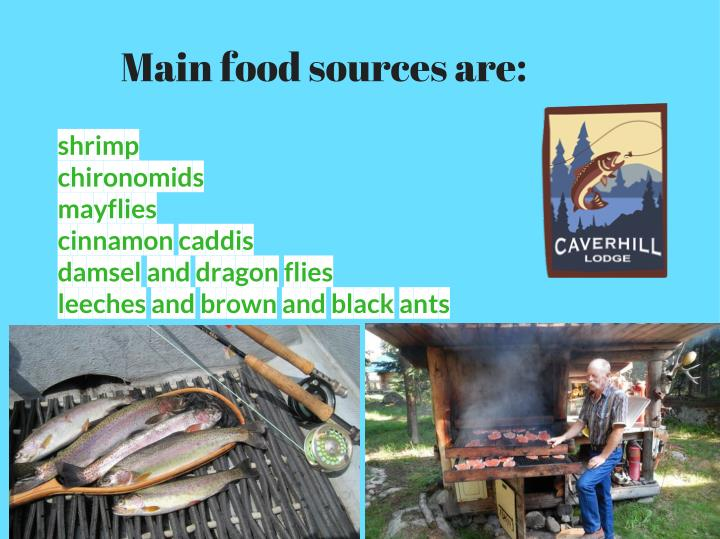 Main food sources are: