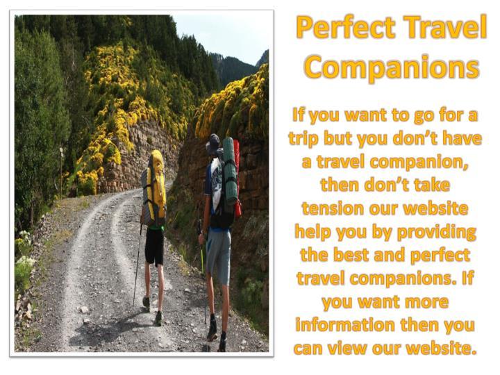 Perfect travel companions