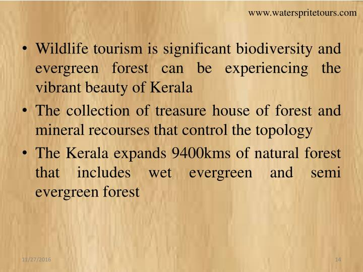 Wildlife tourism is significant biodiversity and evergreen forest can be experiencing the vibrant beauty of Kerala