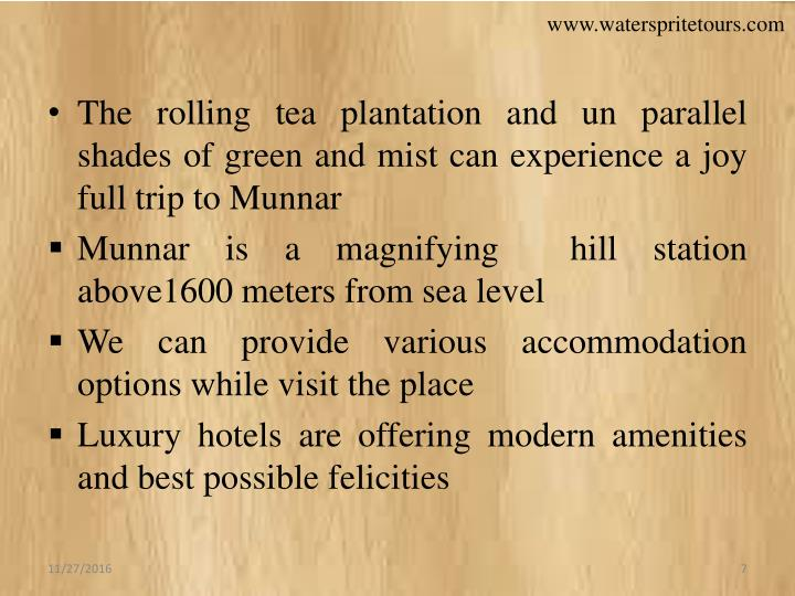 The rolling tea plantation and un parallel shades of green and mist can experience a joy full trip to