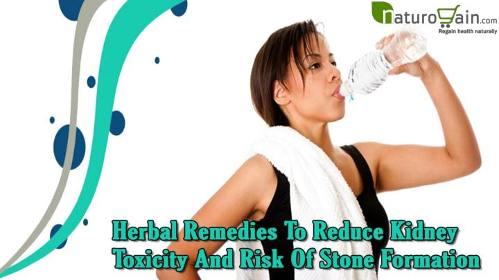 Herbal remedies to reduce kidney toxicity and risk of stone formation