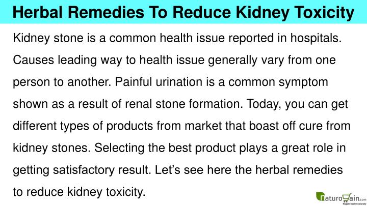 Herbal Remedies To Reduce Kidney Toxicity