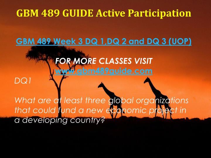 GBM 489 GUIDE Active Participation
