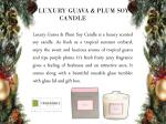 luxury guava plum soy candle