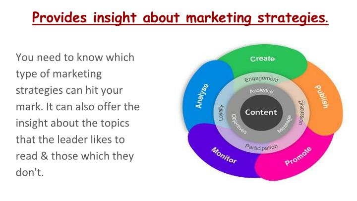 Provides insight about marketing strategies