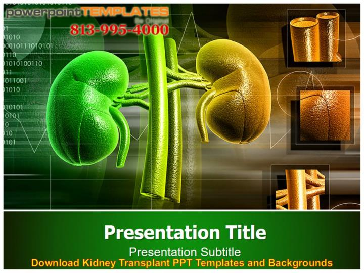 Ppt Download Kidney Transplant Ppt Templates And