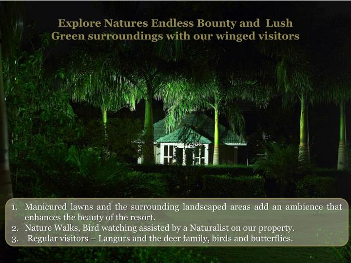 Explore Natures Endless Bounty and  Lush Green surroundings with our winged visitors