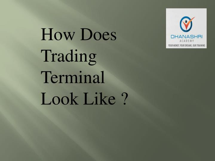 How Does Trading Terminal Look Like ?