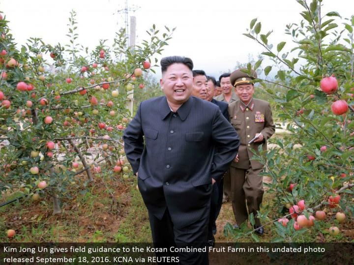 Kim Jong Un gives field direction to the Kosan Combined Fruit Farm in this undated photograph discharged September 18, 2016. KCNA through REUTERS