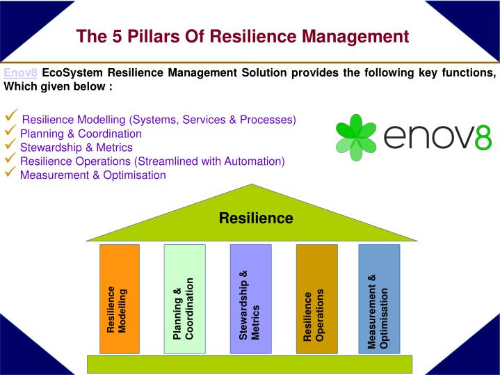 The 5 pillars of resilience management