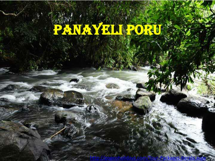 Panayeli